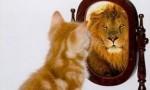 L'estime de soi... dans Mes humeurs... estime-de-soi-150x90